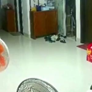 【動画】中国、動いていた扇風機が突然停止して…、すると、今度は火噴いて炎上~!