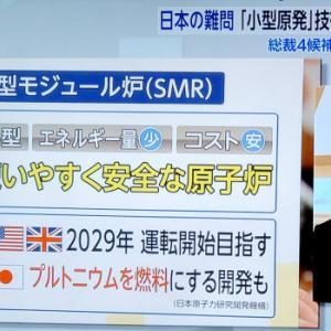 河野太郎「小型原発は消えゆく産業の最後のあがき」← 産業従事者への敬意の欠片もない総理候補