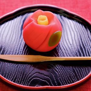 11月の上生菓子「椿」と和菓子道具