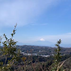 概ね晴れ 紅葉と富士山堪能