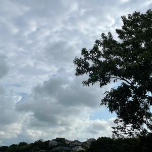 薄曇り 一時雷雨