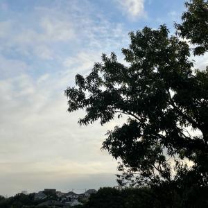 曇りのち雨