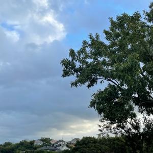 曇りのち晴れ