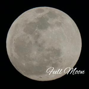 【もうすぐ月食の満月♡動画もUP】不運を払いのけて新しい私に生まれ変わって進化するとき♡