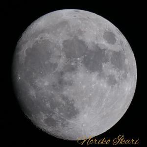 【4日間連続の開運日♡】満月のパワーで立春から運気上昇する♡