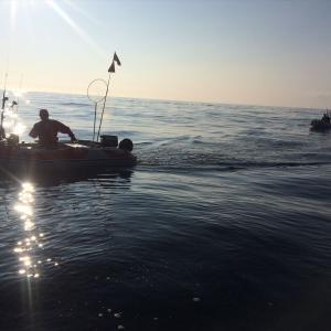 イカとブリ釣り4戦目