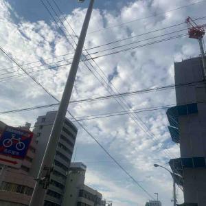 8月2日夕ラン11.5㎞本山通2丁目
