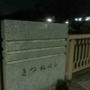 10月27日夜ラン5㎞木津根橋