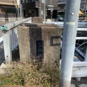 6月3日朝ラン12㎞笠取橋
