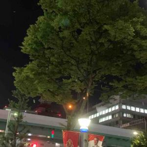 7月16日夜ラン5㎞新栄交差点