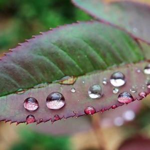 湿度が高いところに長くいると筋肉が硬くなる