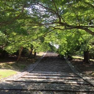 奈良へお散歩