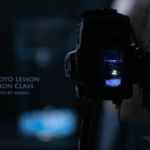 Mphoto Lesson Sessionクラス8月レポ・ライティング撮影(メンバー作品紹介)