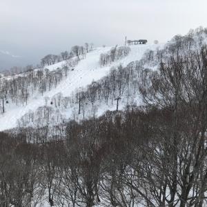 春コブを求めて高鷲スノパ!~滑走27日目~