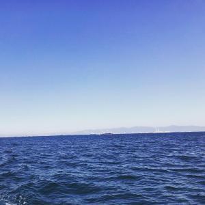 伊勢湾奥の釣り~小潮でのプラクティス~