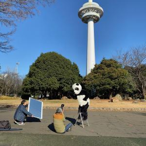 散歩の達人2月号、ラッキーパンダの表紙とポスターのメイキングシーン...♪♪