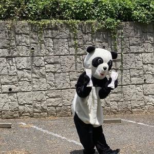 マジ、びっくりしましたわ!! ラッキーパンダのロケのあと...