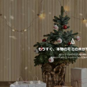 No.1285 ■2019IKEAの本物のもみの木は11/21から全国で発売