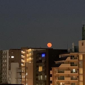 4月の満月