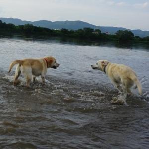8月ラストは真夏日です 夏を惜しんで水遊び!