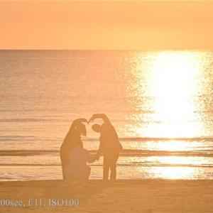 神在月の稲佐の浜のだるま太陽