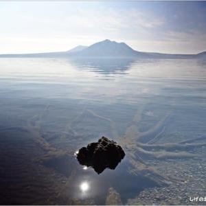 ひ撮り出 支笏湖・・・何時も朽木。