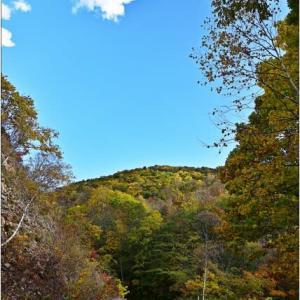 彩の秋を探しに・・・雷音の滝&白井川/冷水峠。