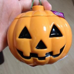 新しいかぼちゃさんが仲間入り。