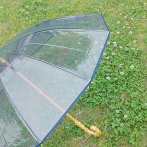 【雨の日も気分良く】一目惚れ☆オトナに似合う、ちょっとリッチなビニール傘