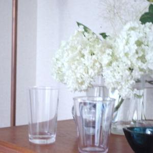 その名も『壊れないグラス』〜マルチに使えて便利な「THE」のグラス