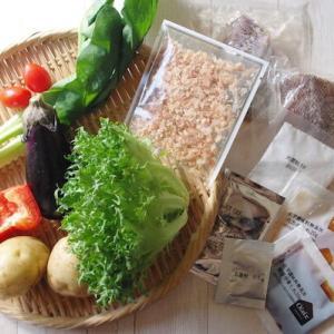 【PR】お家で楽しむ定食屋さんの味♪お腹いっぱいになれる野菜たっぷりメニュー