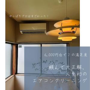 〈結果、全然贅沢じゃない!〉6,000円台でこのクオリティ☆プロに任せて正解だった、人生初エアコンクリーニング