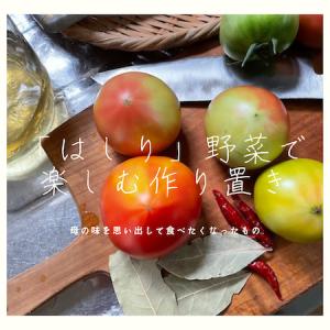 『はしり』の野菜で再現、思わず懐かしくなって作った母の味