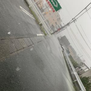 雨ですねー