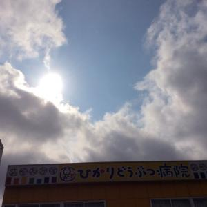 晴れの日の楽しみ。