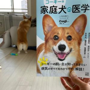 コーギー版 家庭犬の医学を買ったよ