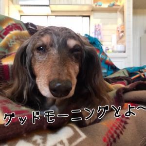 貸別荘でキャンプっぷ〜っ!