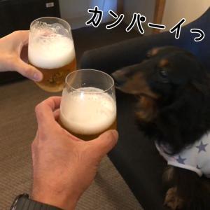 誕生日旅行@お散歩編っ!