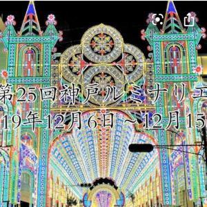 神戸ルミナリエ 黒ラブのクラン ヨウムの虎之介