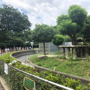今月8回目の動物園