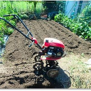 菜園復活作業ver.5 耕運機かけた♪