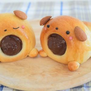 【レシピコラム】丸め成形で簡単♪こいぬのチョココロネ♡
