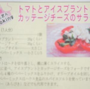 【掲載のお知らせ】よみうりプラザ連載22回目 最後の連載レシピ