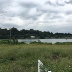 【茨城】つくし湖(桜川市)