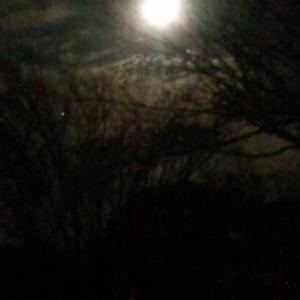 ☆奇麗な満月(=^O^=)