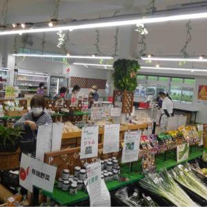 鳩山に新しくできた農産物直売所「上熊井農産物直売所」プレオープン