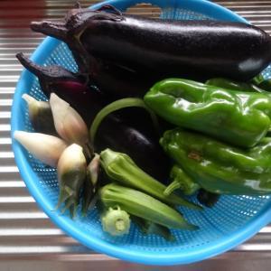 野菜のてんぷらのオードブルと大量に取れた枝豆