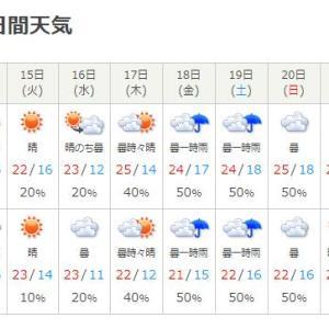 今年の秋祭りは雨でダメかも