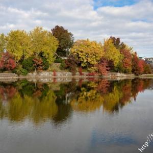 いろどりの森公園の紅葉