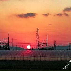 今日の SUNSET